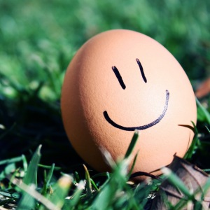 grass_egg_smiley_smile_humor_macro_54212_300x300.jpg