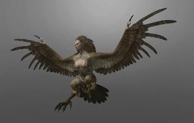 Harpy-380x240